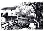 anchorage lane farm