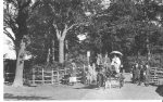 Entrance to Sandall Beat Wood, 1900