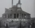 plant brewery sunny bar 1950